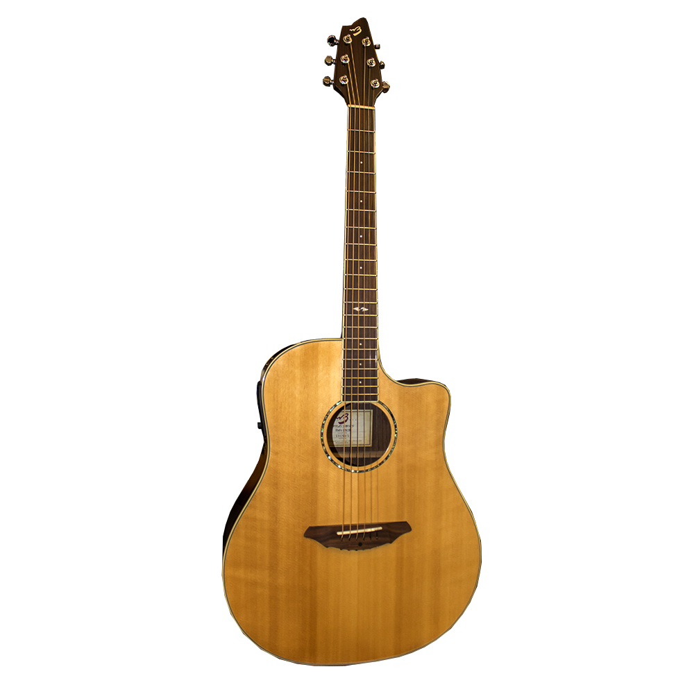 картинка Breedlove Atlas Studio D250/SRe от магазина Multimusic
