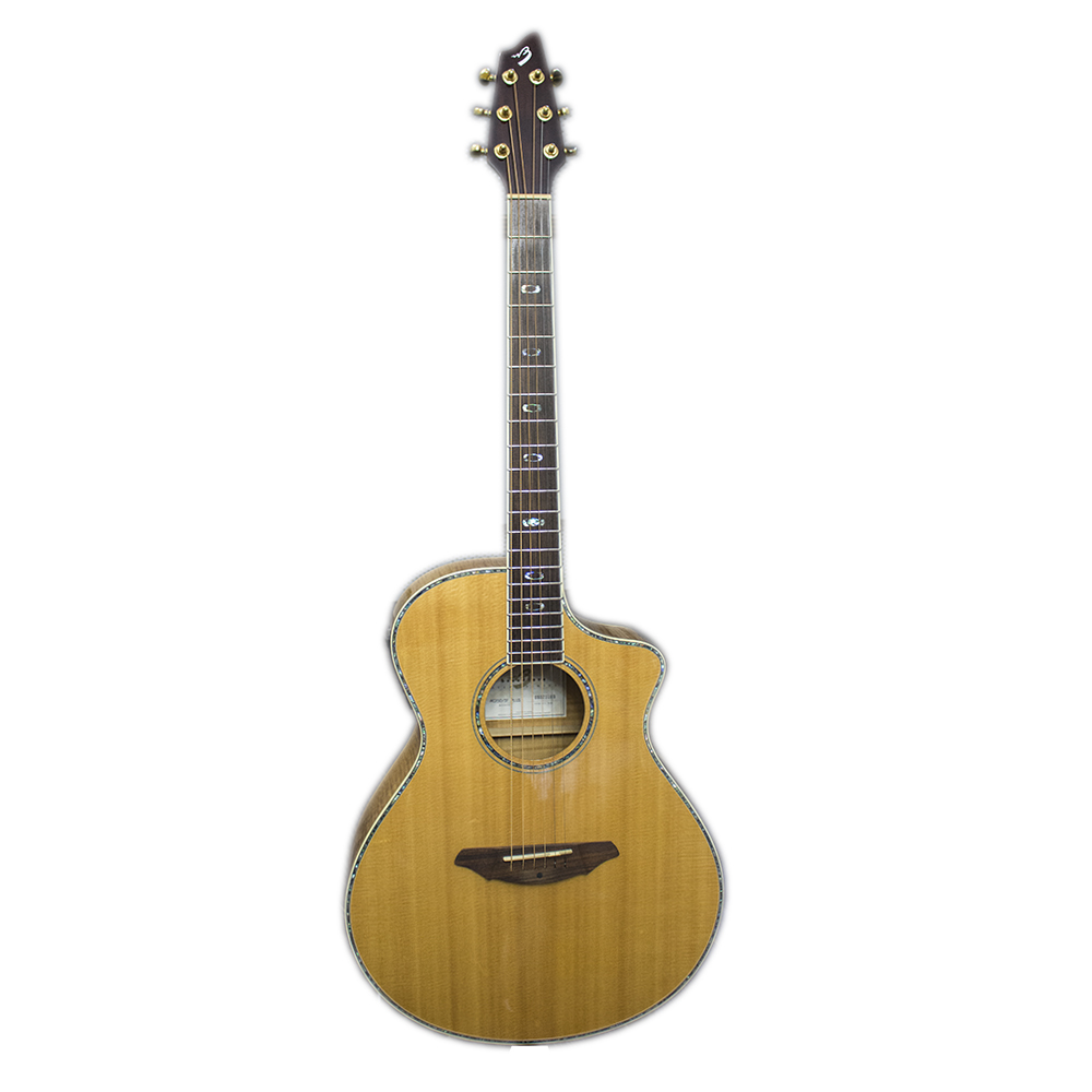 картинка Breedlove Atlas AC250/SF Plus от магазина Multimusic